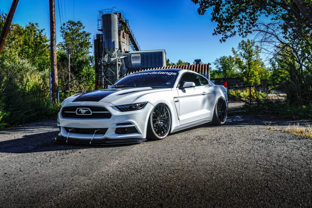 terminated_stang-3